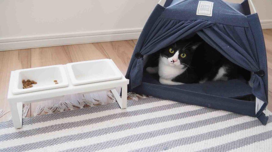 猫飼ってるキャンパーはいますか?
